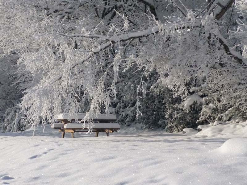 Banc-sous-la-neige