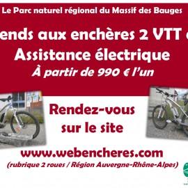 Vente de VTT à assistance électrique